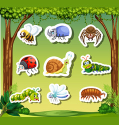 set insect sticker template vector image