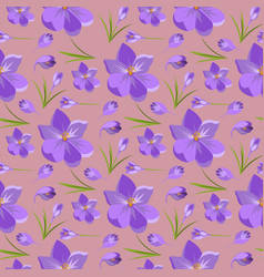 Spring beautiful violet crocuses pattern vector