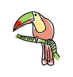 toucan bird hand drawn icon vector image