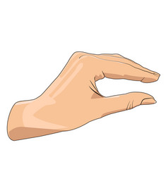 Hand showing small size realistic hand gesture vector