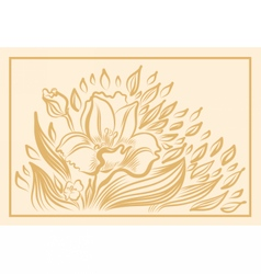 Narcissus spring flower drawing vector image vector image