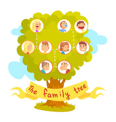 family tree with portraits of relatives vector image