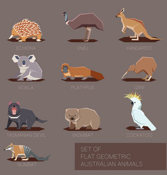 set of flat geometric species of australia vector image