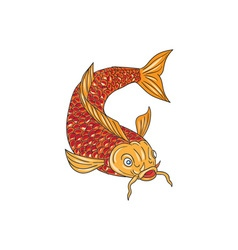 Koi Nishikigoi Carp Fish Swimming Down Drawing vector image