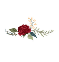 Large dark red rose on a vector
