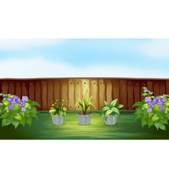 Three plants in a pot inside the fence vector image