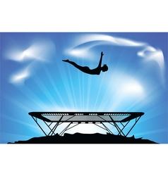 trampoline vector image