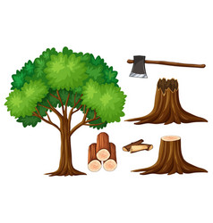 tree and stump trees vector image vector image
