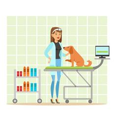 cheerful veterinary doctor examining dog in vet vector image vector image