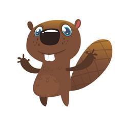222squirrel vector image