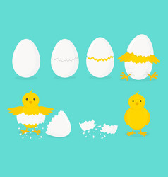 cartoon chicken hatching phases set on a blue vector image