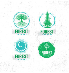 forest therapy guide nature friendly coaching vector image