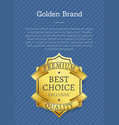 golden brand premium exclusive best choice label vector image