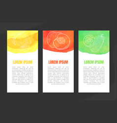 natural fresh juice banner template set with space vector image
