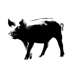 pig banksy style 1 vector image
