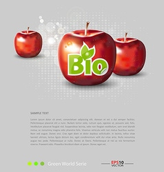 Red apples with bio label vector