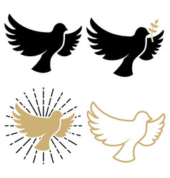 Set of dove icons pigeon with a laurel branch vector