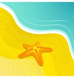 starfish and beach vector image