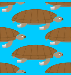 water turtle seamless pattern marine animal vector image