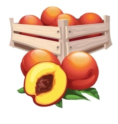 Peach harvest in wooden box fruit vector image vector image
