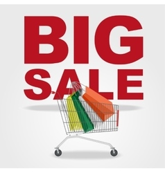 big sale and shopping cart vector image vector image