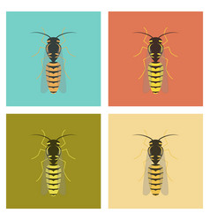 Assembly flat insect wasp vector
