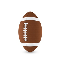 football ball 2 vector image