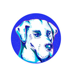 labrador retriever dog doodle circle vector image