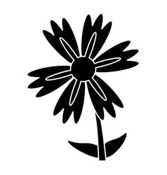 silhouette lily flower natural vector image