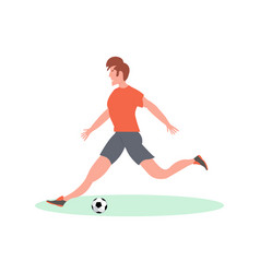 soccer player kicking the ball in stadium vector image