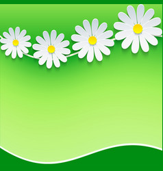 Floral frame background with 3d chamomile vector image vector image