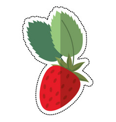 cartoon strawberry sweet vitamin nature vector image vector image
