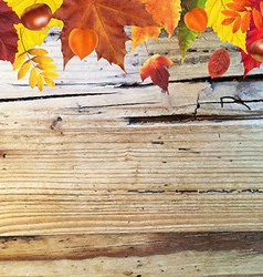 Autumn Border With Wooden Background vector image
