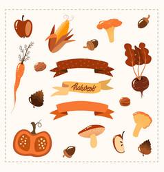 Autumn set hand drawn elements vegetables vector