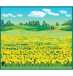 beautiful country landscape with tulips vector image
