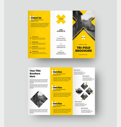 Brochure template trifold presentation with vector
