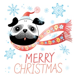 Christmas card with pug vector image