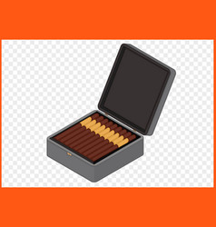 cigar box vector image