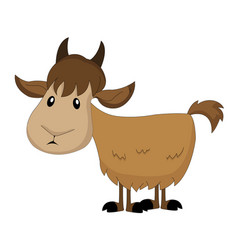 cute brown goat vector image
