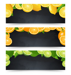 horizontal advertisement banners set with vector image