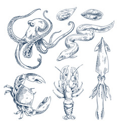 Monochrome hand drawn seafood poster vector