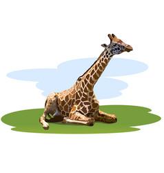 Tired giraffe vector