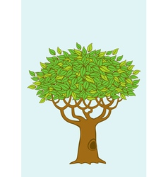 the tree vector image vector image
