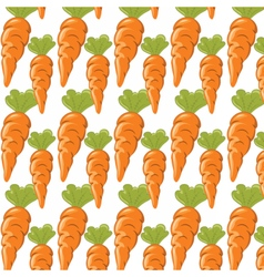 Carrots pattern isolated vector