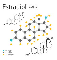 Chemical formula of the estradiol molecule vector