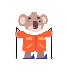 Coala bear skiing cute animal cartoon character vector