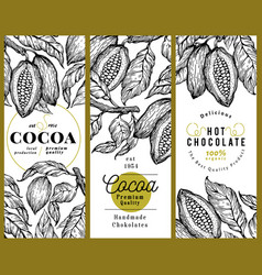 cocoa bean tree banner template set chocolate vector image