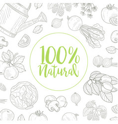 Natural farm food banner template with hand drawn vector