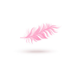 pink floating bird feather isolated on white vector image