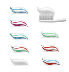 toothpaste smear to clean maintain health of vector image